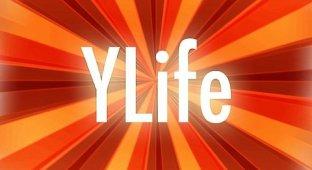 YourLife. Статистика собственной жизни