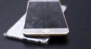 В Сети появились правдоподобные фотографии iPhone 6