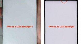 В Сети появились изображения панели подсветки дисплея для iPhone 6 [фото]