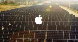 Тим Кук озвучил вдохновляющее видео Apple о главных ценностях компании [видео]