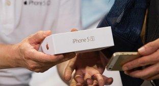Apple могут обязать внести iOS и OS X в реестр программного обеспечения