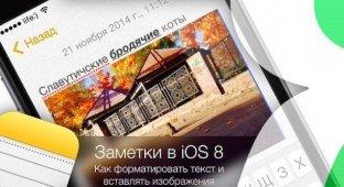 Заметки в iOS 8. Как форматировать текст и вставлять изображения