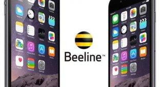 «Билайн» объявил о снижении цен на iPhone 6 Plus